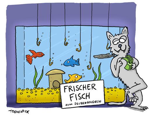 dorsch5